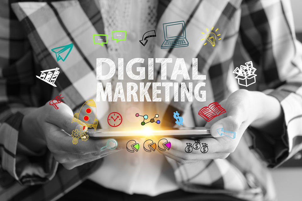businesses and digital agencies